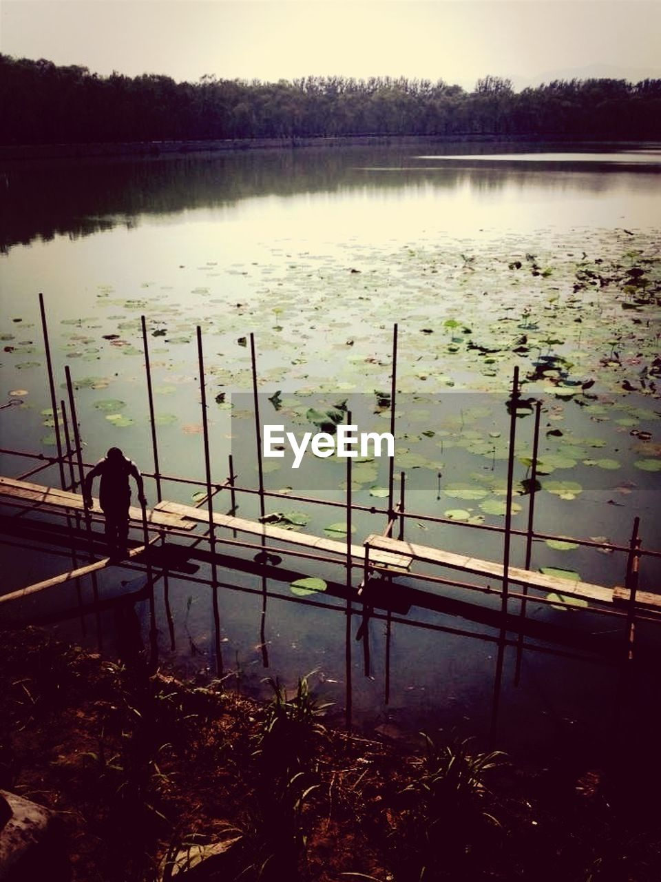 High Angle View Of Man Standing On Plank Over Lake