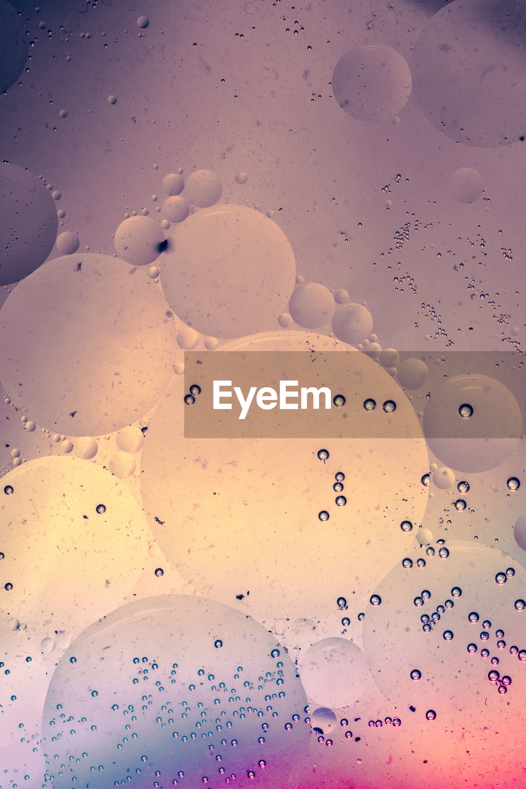 High angle view of bubbles on beach