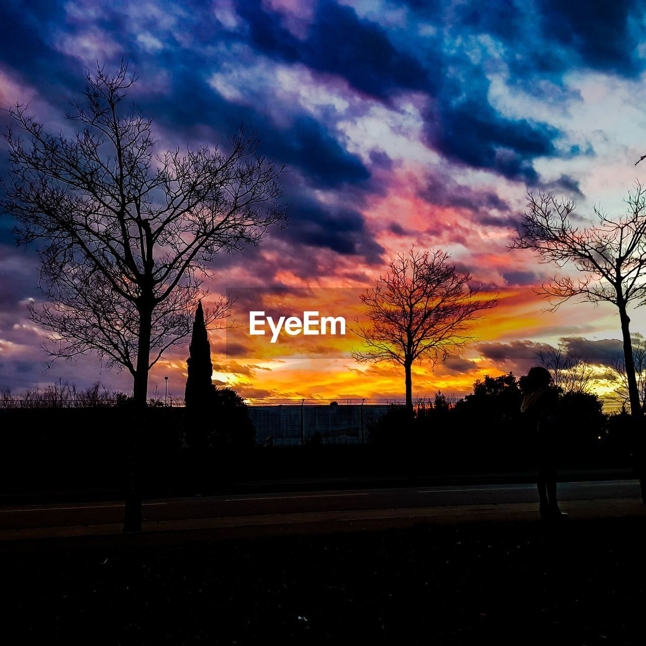 sky, cloud - sky, sunset, tree, silhouette, plant, beauty in nature, orange color, nature, architecture, no people, building exterior, built structure, scenics - nature, road, bare tree, tranquility, city, tranquil scene, outdoors