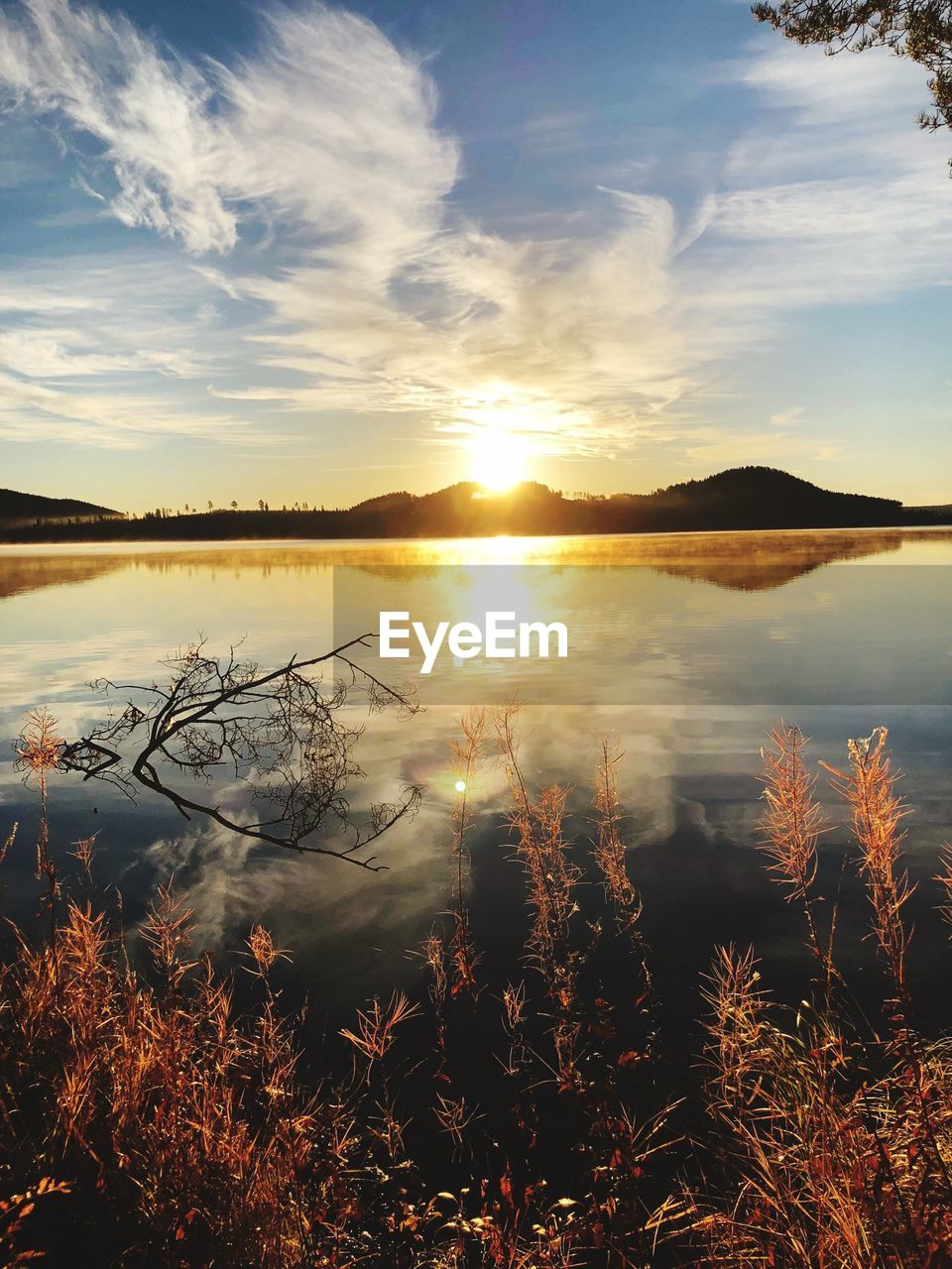 sky, water, tranquility, tranquil scene, lake, cloud - sky, scenics - nature, beauty in nature, reflection, sunset, plant, nature, no people, non-urban scene, sun, sunlight, idyllic, tree, outdoors