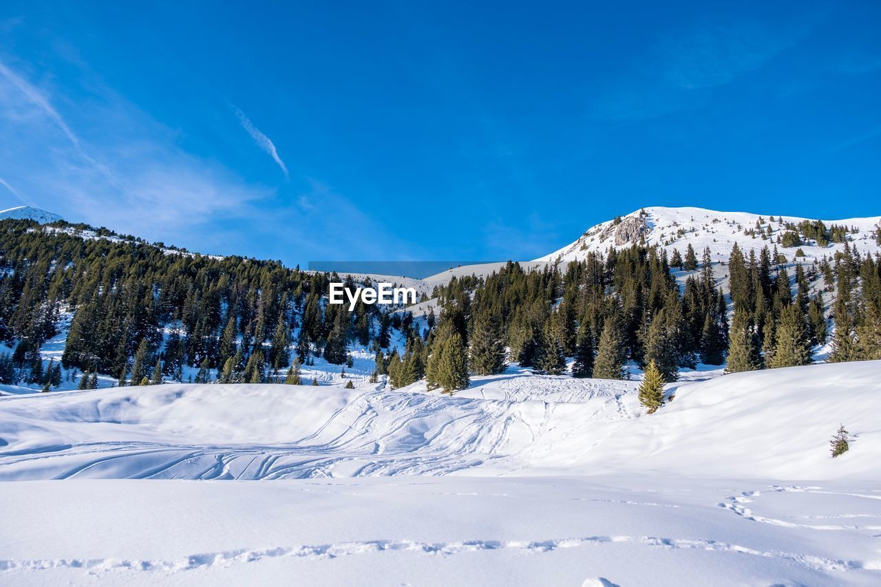 winter, cold temperature, sky, snow, beauty in nature, scenics - nature, mountain, tranquil scene, tranquility, cloud - sky, white color, nature, non-urban scene, environment, blue, tree, plant, no people, day, snowcapped mountain, mountain peak