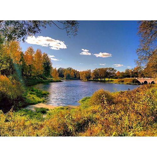 Across the street from the Pavlovsk Palace. Pavlovsk Pavlovskpalace Suburban Spb nature lake trees autumn