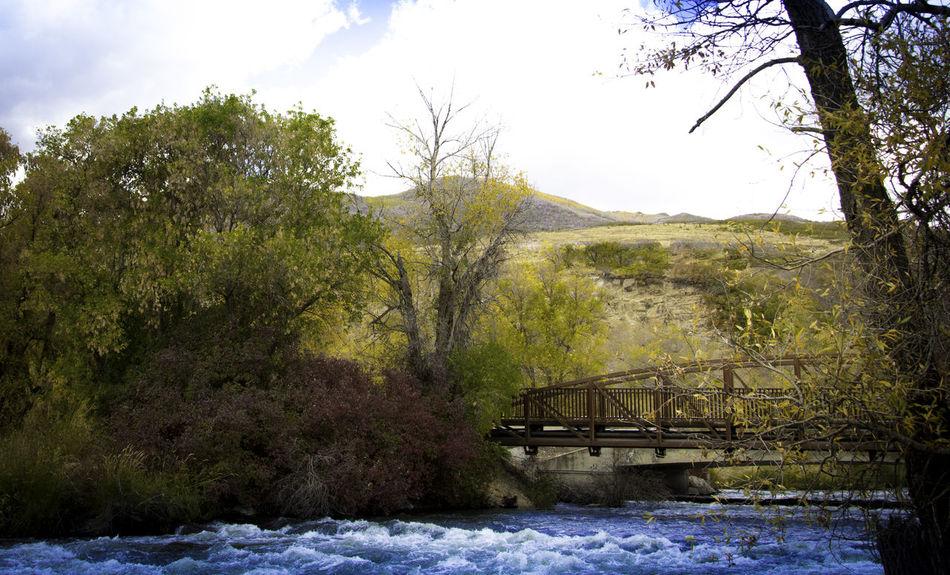 Rust Multicolors  Autumn #river #bridge #water #autumn Outdoors Nature Tranquil Scene Beauty In Nature