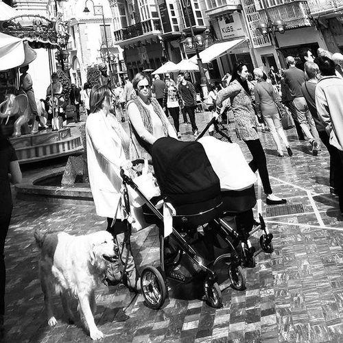 Happy Dog Streetphotography Blackandwhitestreetphotography Streetphoto Blackandwhite Blackandwhitephotography Bnw_maniac Bnwlife Bnwlovers Bnw Monochrome Mono