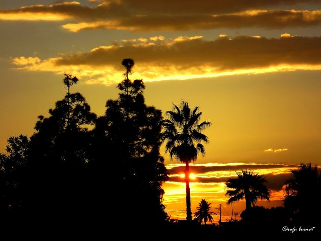 Atardece en Muchavista, El Campello, Spain. EyeEm Nature Lover EyeEm Best Shots Eye4photography  Nature Landscape Clouds And Sky Taking Photos Relaxing Sunset Sky