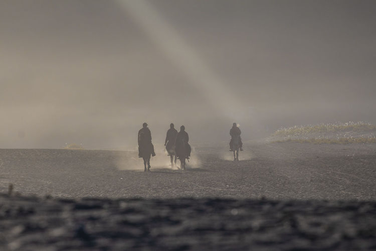 Silhouette people riding horse at desert