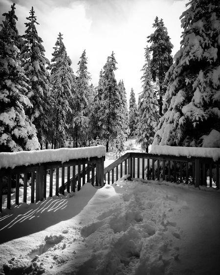 My Winter Favorites Winterwonderland Snowyday Myruraltown