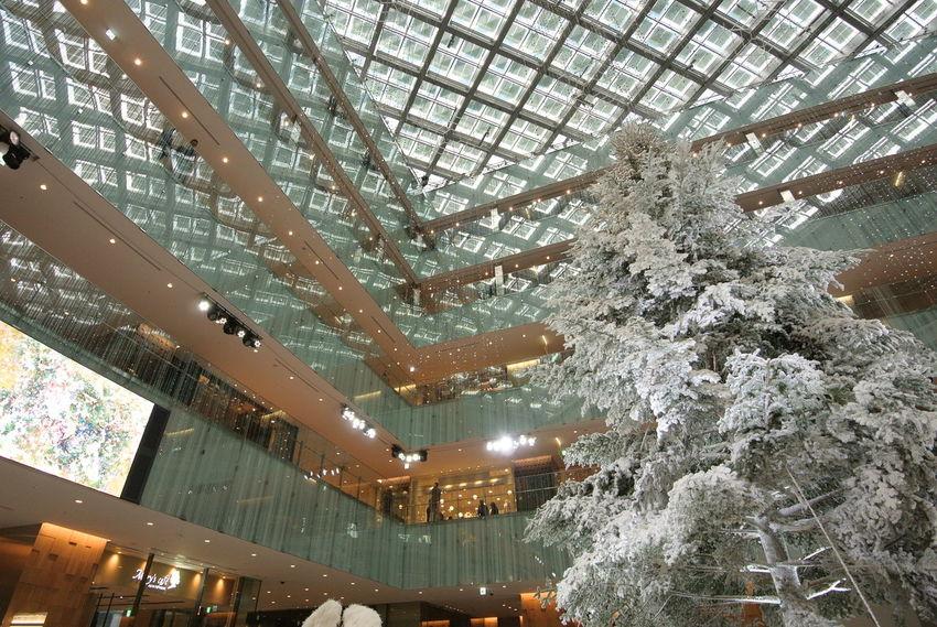 Best Christmas Lights KITTE Christmas Tree