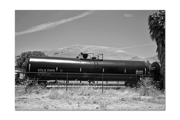 Freight Train 3 Union Pacific Railroad Intermodal Freight Transport Freight Train Tank Cars Liquid Or Gaseous Commodities Passes Through Niles Canyon Eastbay Hills Monochrome_Photography Monochrome Black & White Black & White Photography Black And White Black And White Collection  Railroad_Photography Train_Photography Landscape_Collection Trees Palm Tree Sky And Clouds Chainlink Barrier