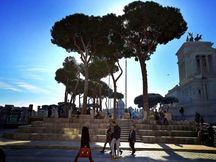 Trees Rome Italy🇮🇹 Travel Travel Photography Eye4photography  EyeEmNewHere Sunny Sunnyday☀️ Historic Amazing Citylife People Street Tree City Sky Architecture Built Structure Street Scene Visiting Moving Around Rome