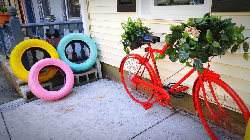 Bicycle Built Structure Building Exterior Clean Shot Simple Photography Growth Freshness Red Bright Colors Expressive