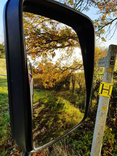 Tree Window No People Day Outdoors Sky Close-up Nature Mirror Reflection Mirror Mirror Image Lorry Truck Truckerslife Trucks🚛🚒🚚⚠ DAF Autumn🍁🍁🍁 Autumn Colors Autumn Leaves Autumn Collection Gas Bottles Gas Cylinder Essex Roadsidephotography Roadside Photography