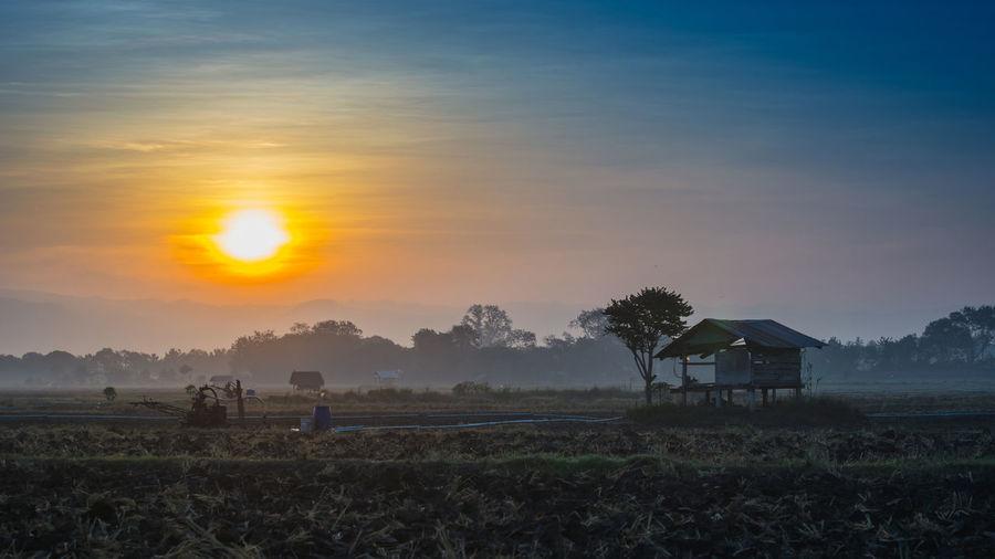 Farm against sky during sunset