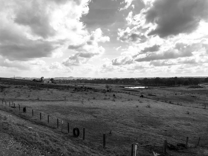 The land Black & White Shadow And Light Monochrome Mountain Range Sky Landscape Field Cloud - Sky Nature Tranquil Scene Outdoors Day Scenics Tranquility Agriculture Beauty In Nature Grass Rural Scene No People Mammal