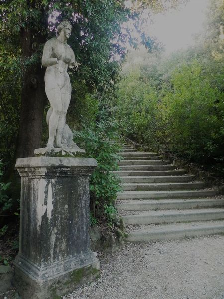 Antique Cultura Culture Day Firenze Florence Green Italia Italian Culture Italy Nature Outdoors Statue Statues Story