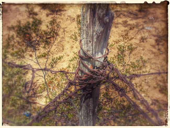 Hdr_Collection EyeEm Nature Lover Passion For Edits Oldwest by Charmin Edwards