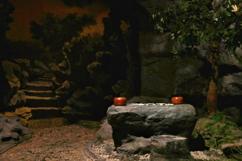 你又在哪里? Tree Tomb Grave Mausoleum