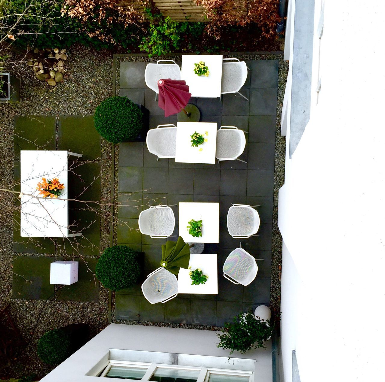 plant, nature, high angle view, flower, no people, day, flowering plant, table, chair, potted plant, seat, outdoors, freshness, arrangement, white color, beauty in nature, growth, green color, directly above, still life, flower pot