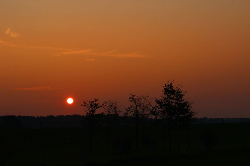 Streamzoofamily Sunset Silhouettes Sun_ Collection Nature_ Collection