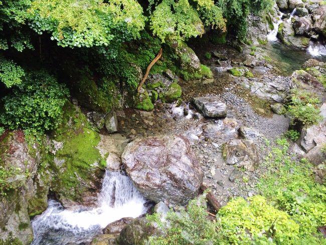 風景 River 秩父 Forest Mystery Enjoying Life Superb View EyeEm Gallery EyeEm Nature Lover EyeEm Best Shots EyeEm 絶景 Happy Enjoy Clear Stream 癒し Riverside