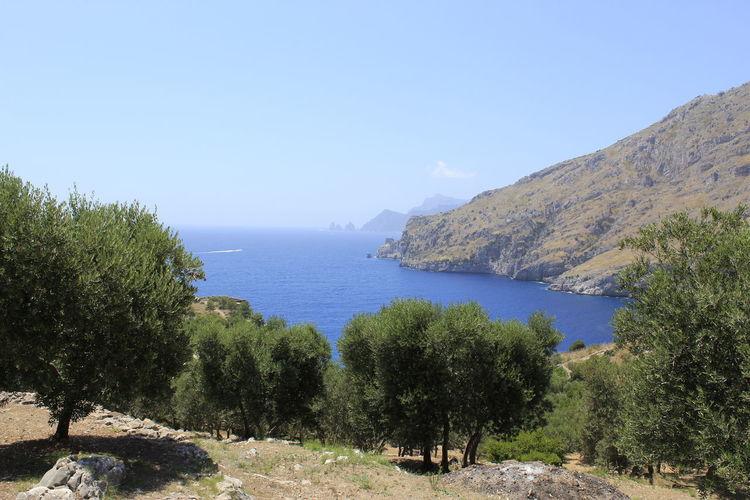 Vista Capri -