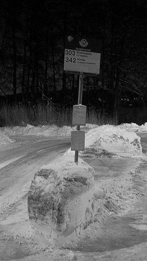 Bus stop Bus Stop Natur Monochrome Black And White Stockholm, Sweden Ekerö Streetphotography Snow Waiting Water