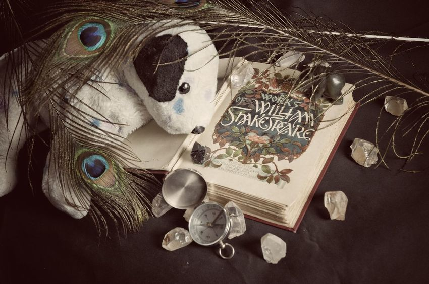 Close-up High Angle View Indoors  Coin No People Day William Shakespeare Peacock Feathers Compass Stones Stuffed Animal here is a book over 100 years old. Since 1902