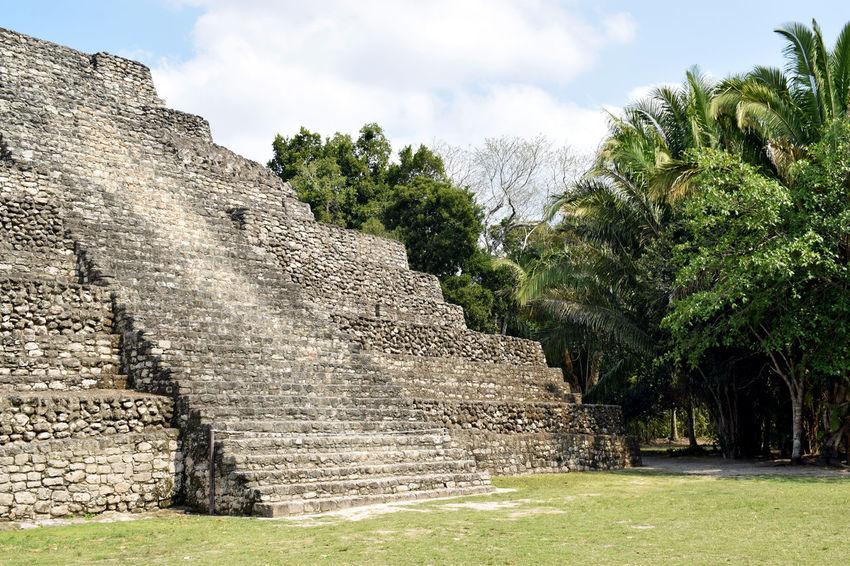 Bacalar Bacalar Lagoon Chacchoben Mayan Ruins Mayan Pyramid Mexico Ancient Architecture Beauty In Nature Grass History Jungle Maya Old Ruin Tree
