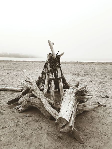 Monochrome Photography Beach Sand Driftwood Tranquil Scene Water Tranquility Sea Clear Sky Nature Non-urban Scene Travel Destinations Seaweed At The Beach Shore Scenics Outdoors Vacations Dead Tree Solitude Day Arid Climate Long Goodbye