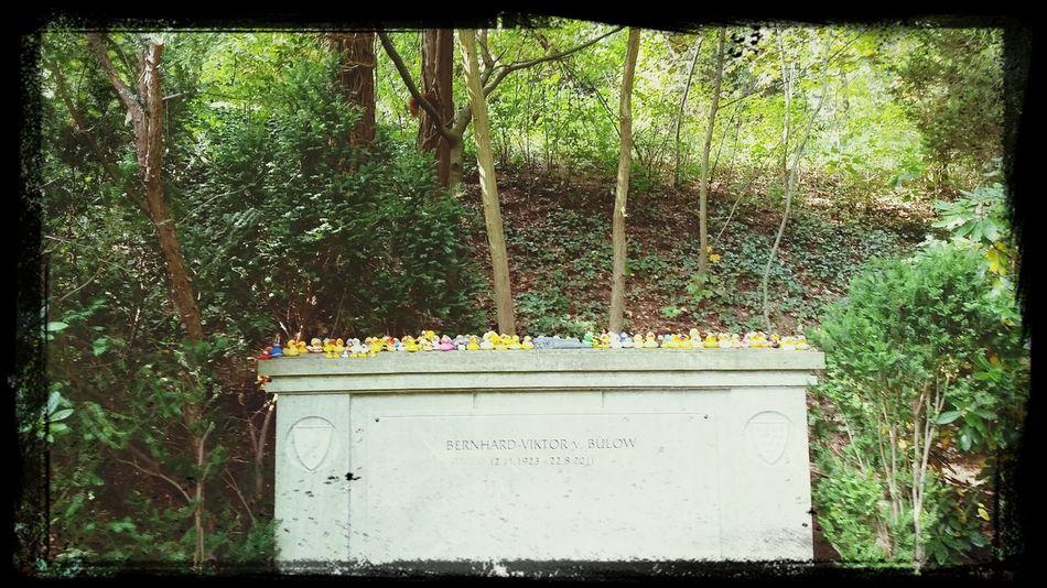Cemetery Waldfriedhof Loriot Kuck Mal N Eichhörnchen