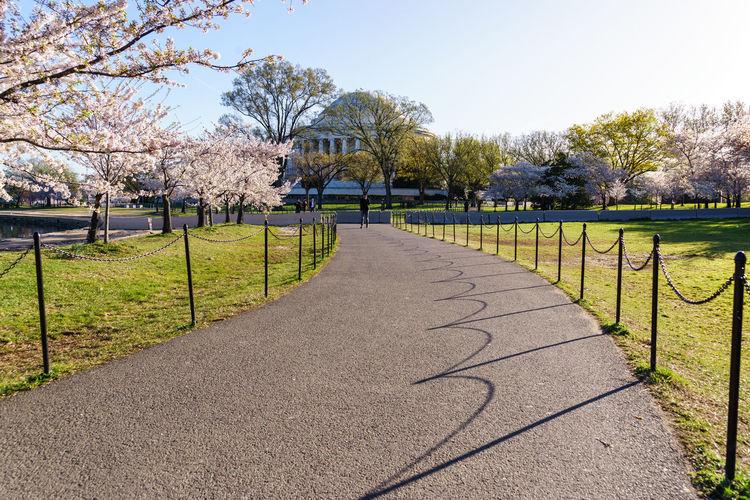 Footpath on field by jefferson memorial against clear sky