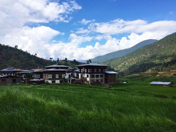 Traveling Bhutan Punakha Chimi Lhakhang Rice Field Temple First Eyeem Photo