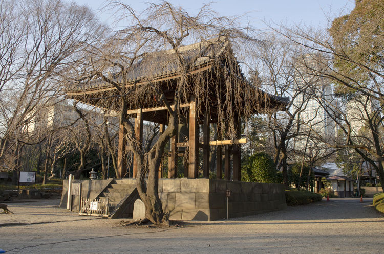 Architecture Bare Tree Building Exterior Built Structure Day Japan Nature No People Outdoors Sky Temple Tokyo Tree