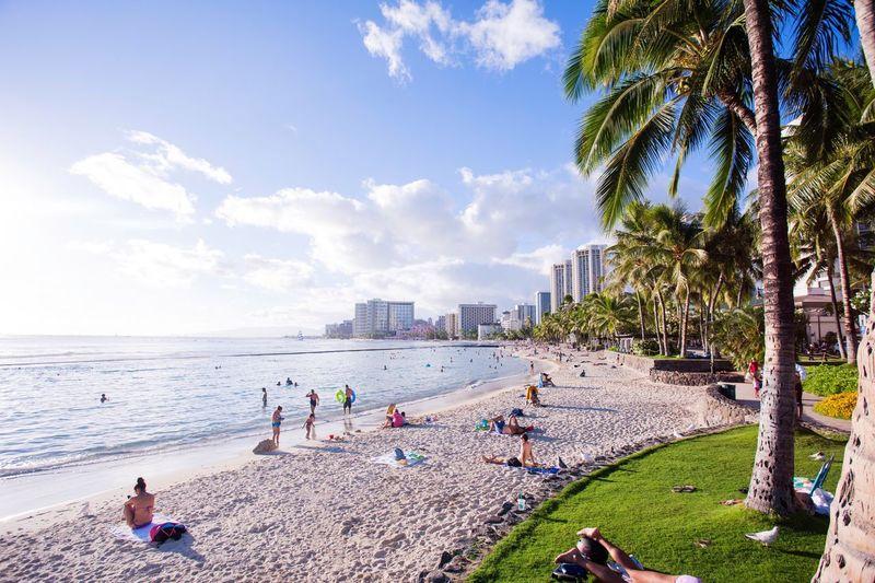Just one fine day Beach Sea Day Palm Tree Sky Vacations Sand Hawaii Waikiki Landscape