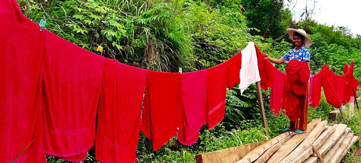 Hanging Out Mondulkiri, Cambodia Washing Clothesline Hanging Around Washing Line Red Towels Red Happy Working Hanging Out The Washing Working Outside Cleaner Maid Side Of The Road Middle Of Nowhere Jungle Tree Lodge Wood