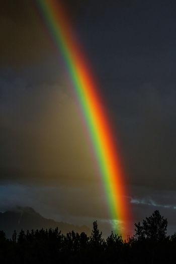 Somewhere over the Rainbow. Rainbow Sky Rainbow🌈 Rainbow