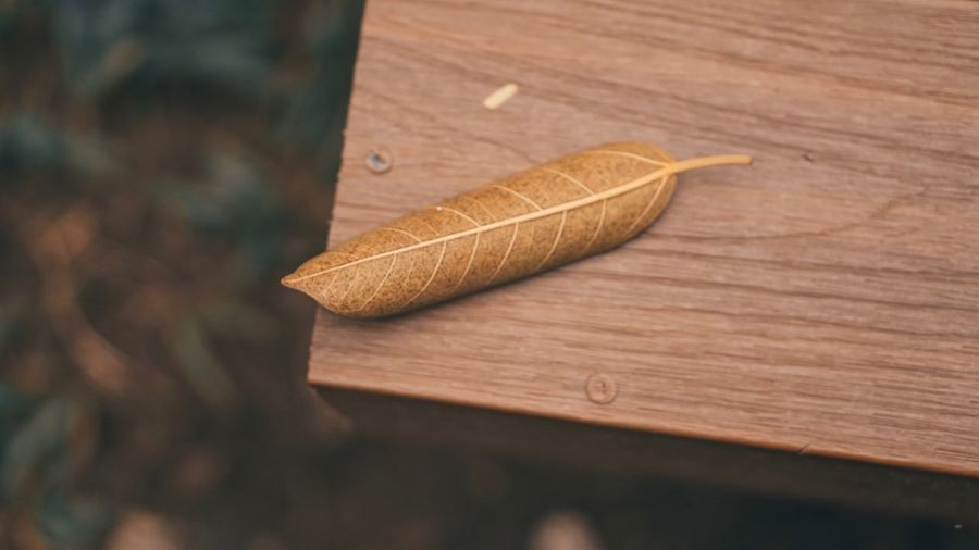 Close-up of wood on table