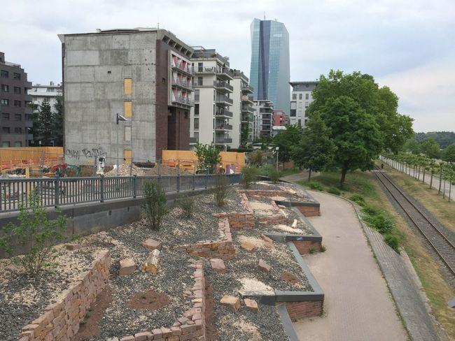 EZB Ostend in Frankfurt Am Main Frankfurt's Life Architecture Architecture_collection Architectural Detail River Three Nature
