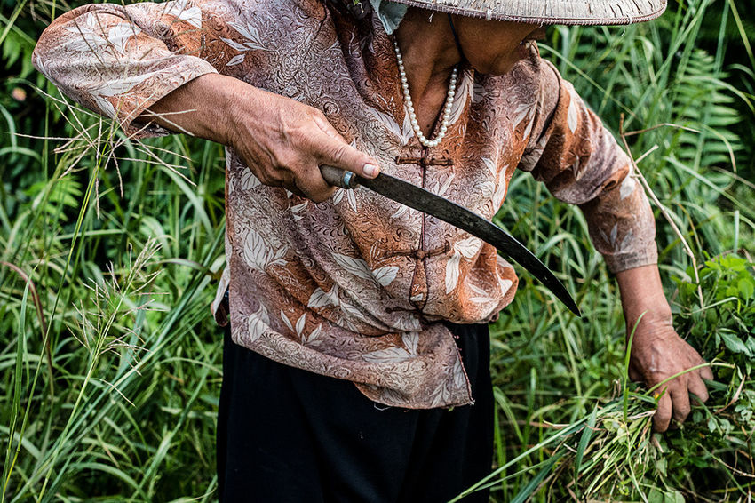 A woman working in the fields | Tam Coc, Ninh Binh. Agriculture ASIA Cutting Farmer Field One Person People The Photojournalist - 2017 EyeEm Awards Vietnam Woman Working
