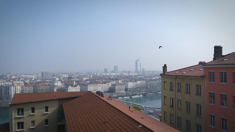 Lyon Cityscape Urban Landscape Vol D Oiseau
