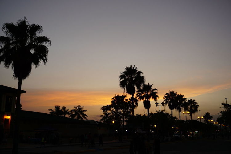 Laguancha Noedit #nofilter #notneeded Nofilter Orange Clouds Sunset Cloud Palm Trees Sunset🌅 EyeEm Nature Lover