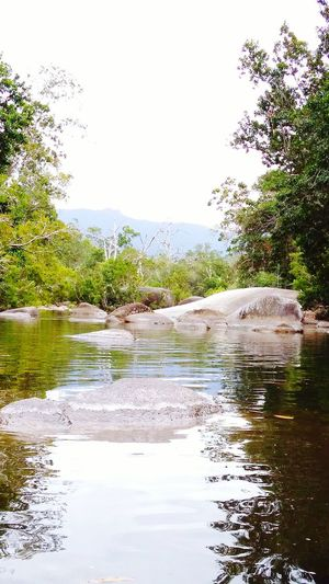 Beauty In Nature no people River And Falls mountains Reflection cold Tranquility trees Rainforest Australia Breathing Space