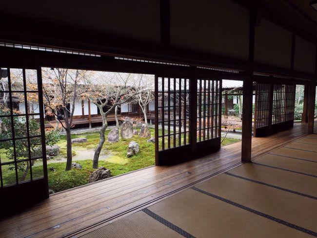 Kyoto Japan Higashiyama Kenninji Temple Temple Cho-on-tei Garden Winter Olympus PEN-F 京都 日本 東山 建仁寺 寺 潮音庭 冬