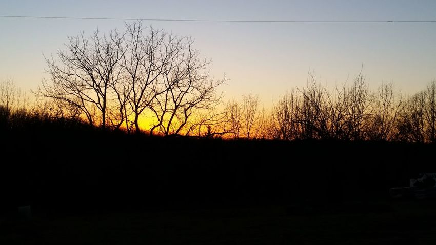 Missouri Ozarks United States Winter Bare Tree Rural Sunset Silhouette No People Sky Nature Backgrounds Beauty In Nature Outdoors Day