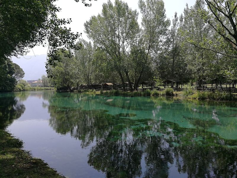 Parco del Rio Grassano Grassano Parco Rio San Salvatore Telesino Telese Terme Alveo Beauty In Nature Day Fiume Fondale Growth Lake Letto Di Fiume Nature No People Outdoors Plant Reflection Riflesso D'acqua Scenics - Nature Simmetria Tranquil Scene Tranquility Tree Water