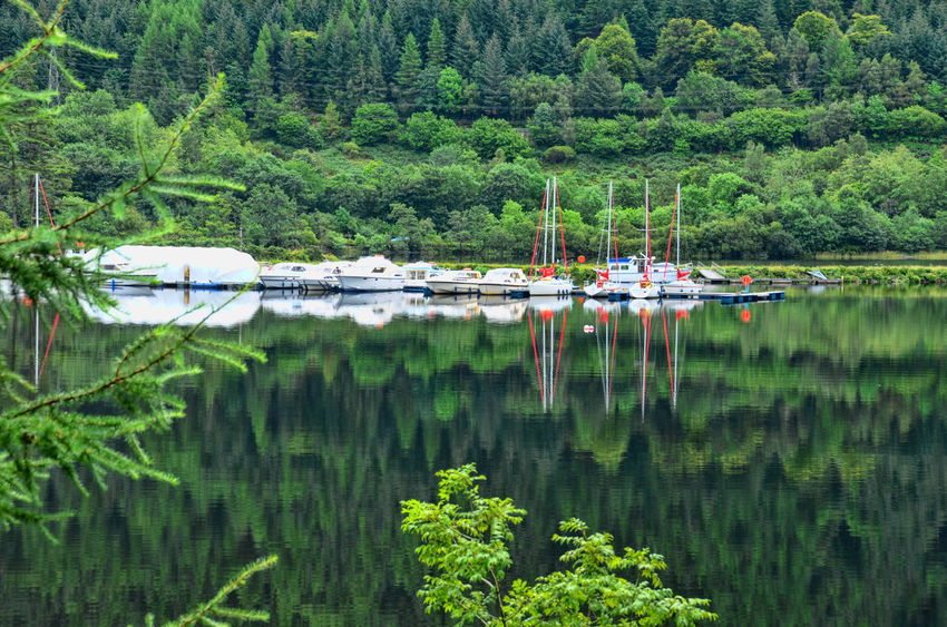 Water Reflection Tree Nature Nautical Vessel Tranquility Beauty In Nature Mode Of Transport Green Color Caledonian Canal Laggan Locks