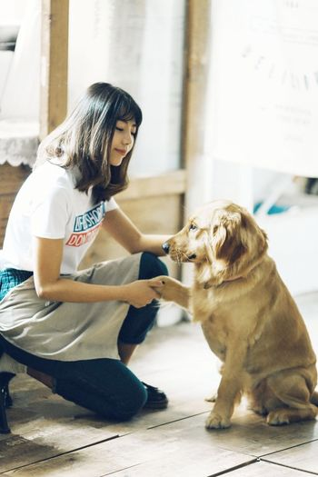 Young woman with dog crouching on floor