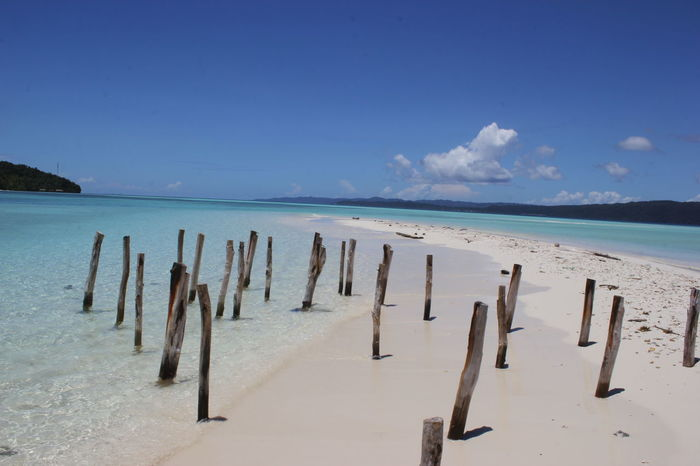 INDONESIA Traveling Trip Beach Beauty In Nature Day Horizon Over Water Nature No People Outdoors Raja Ampat Sand Sea Sky Water Wood - Material