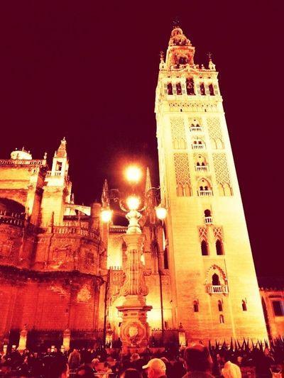 Andalucía Sevilla Semana Santa Sevilla 2013 Catedral De Sevilla