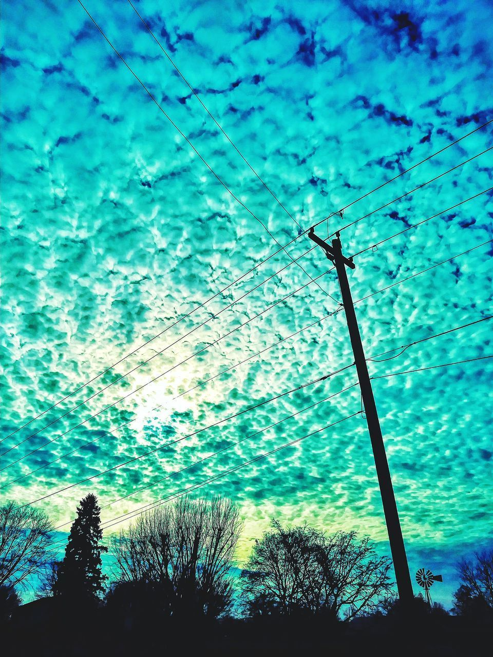 LOW ANGLE VIEW OF SILHOUETTE TREES ON BLUE SKY